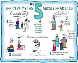 treating head lice by understanding the 5 head lice myths